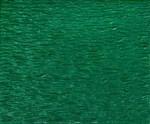Green Still life 80 x 80 cm
