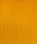 yellow-rain-60x50-cm
